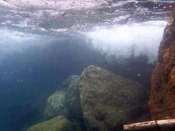 水中.jpg