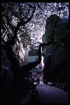 香港3.jpg